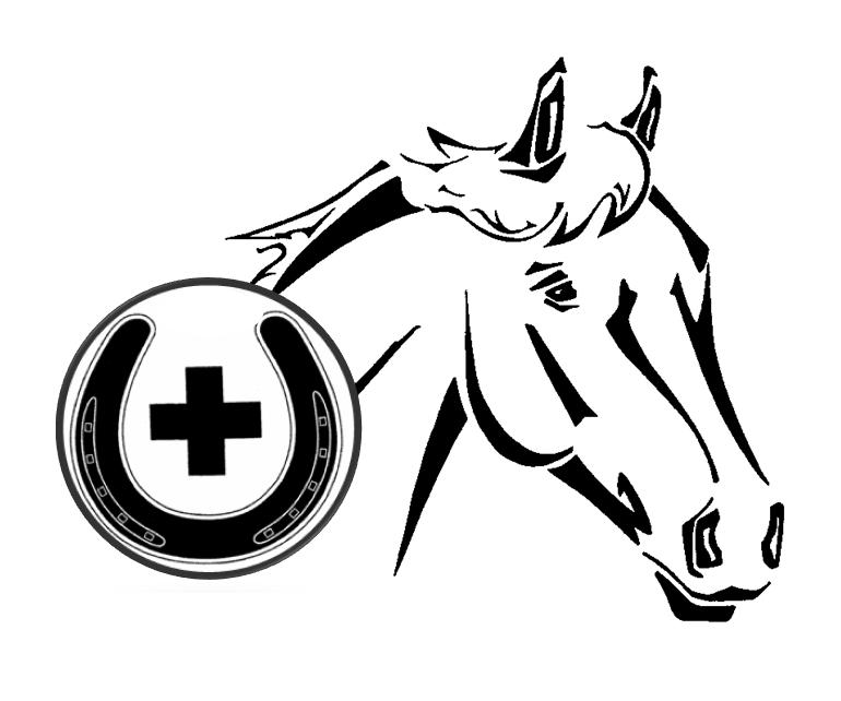 Pferdepraxis Wohlfender-Remy
