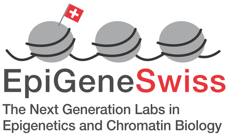 The Next Generation Labs in Epigenetics and Chromatin Biology